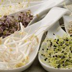 germogli: proprietà nutritive e come mangiarli
